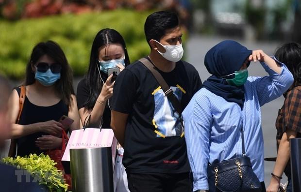 外交部例行记者会:切实保障在新加坡越南公民的人身安全 hinh anh 1