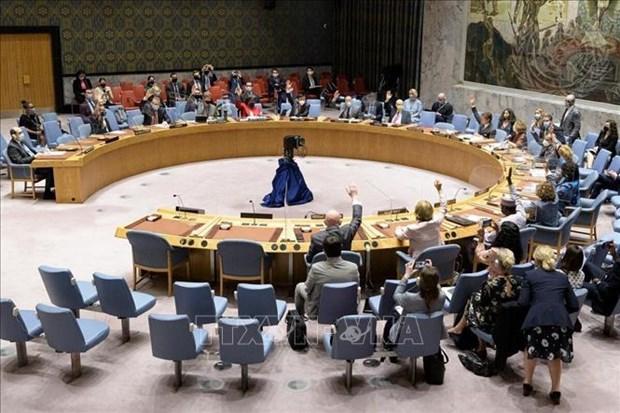 越南与联合国安理会:越南呼吁采取紧急行动防止黎巴嫩崩溃 hinh anh 1