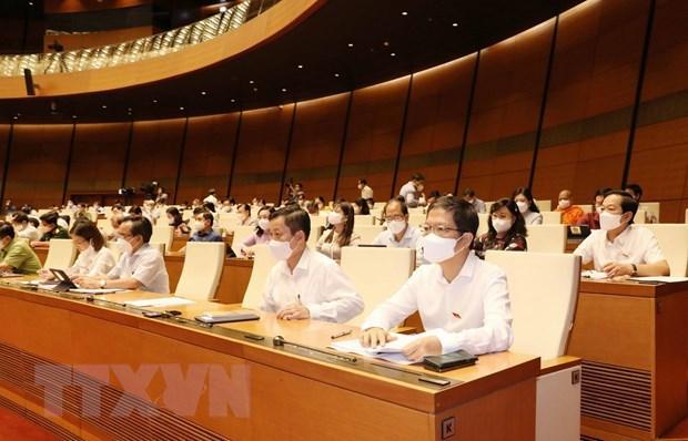 第十五届国会第一次会议:提交选举国家主席的提名名单 hinh anh 1