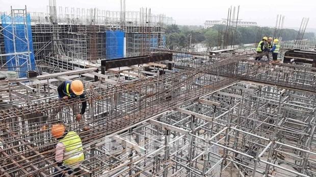富寿省开展10个重点项目 为经济发展注入动力 hinh anh 1