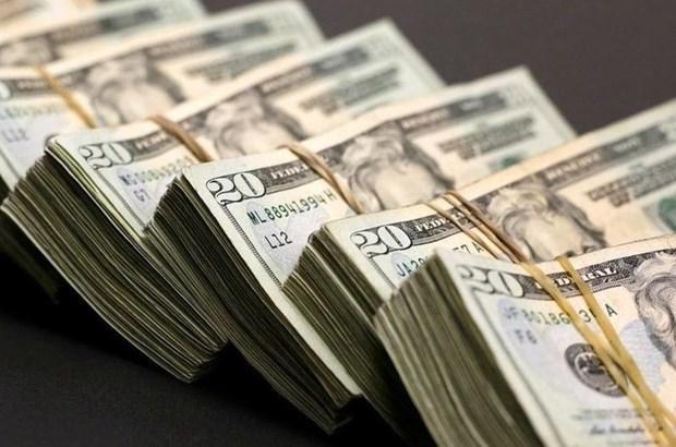 7月28日上午越盾对美元汇率中间价继续下调1越盾 hinh anh 1