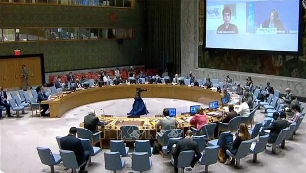 越南与联合国安理会:呼吁各国和国际组织继续向巴勒斯坦人民提供援助 hinh anh 1