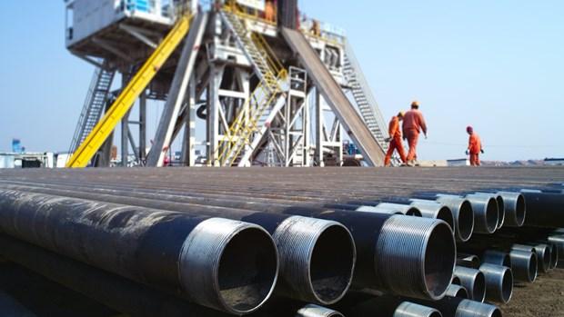 美国对越南输油管道反倾销行政复审终裁结果 hinh anh 1