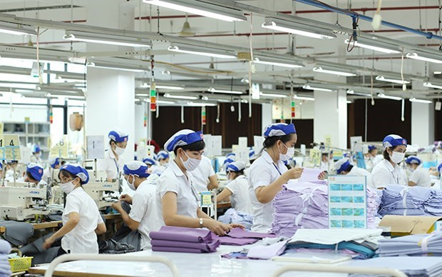 越南纺织品服装出口额同比增长20% hinh anh 1