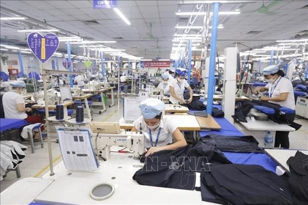 越南取代孟加拉国成为世界第二大纺织品服装出口国 hinh anh 1