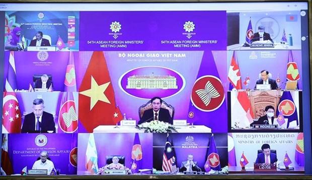 东南亚无核武器区条约委员会会议召开 hinh anh 2