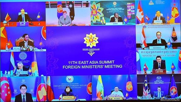 第11届东亚峰会外长会议以线上方式举行 hinh anh 1