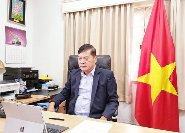 越南经济数字化转型和各领域发展机遇研讨会在线上举行 hinh anh 2