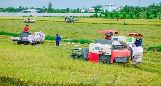澳大利亚为越南农业发展提供支持 hinh anh 1