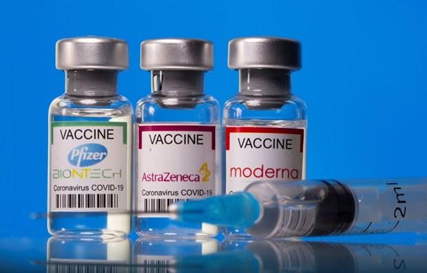 胡志明市建议在8月份给该市分配550万剂新冠疫苗 hinh anh 1
