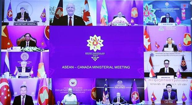 加拿大愿意与东盟一道将双边关系推向新高度 hinh anh 1