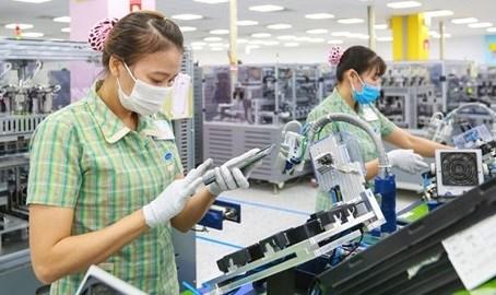 EVFTA和CPTPP为越南出口带来数十亿美元 hinh anh 1
