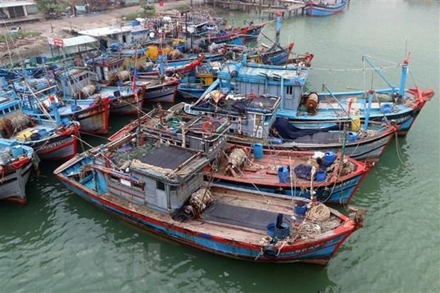 越南要求中国不使东海局势复杂化 hinh anh 1