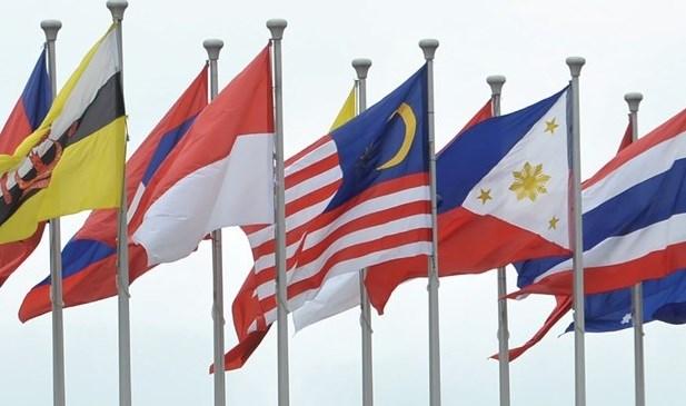 东盟单一窗口:增加私营部门的参与 促进跨境贸易发展 hinh anh 1