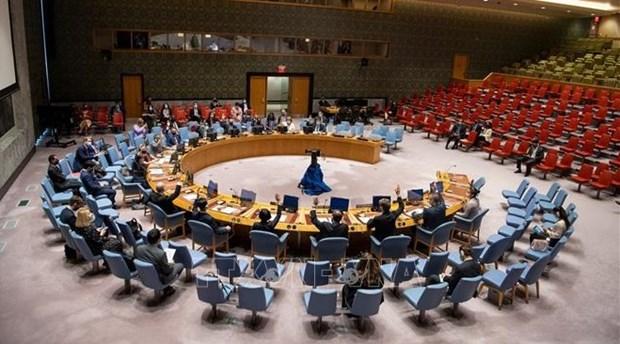 越南与联合国安理会:越南重申谴责使用化学武器的立场 hinh anh 1