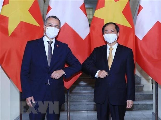 越南外交部部长裴青山与瑞士副总统兼外长卡西斯举行会谈 hinh anh 1