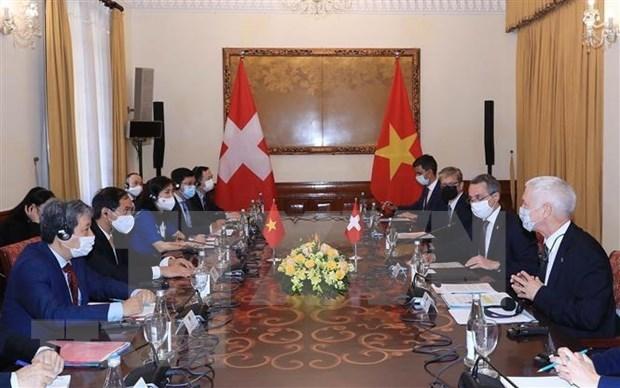 越南外交部部长裴青山与瑞士副总统兼外长卡西斯举行会谈 hinh anh 2