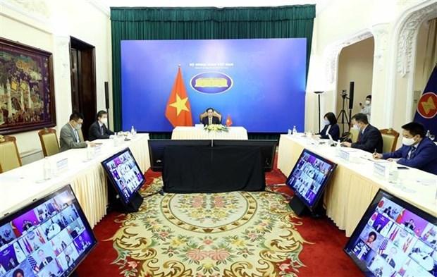 第一次湄公河之友部长会议以视频形式举行 hinh anh 1