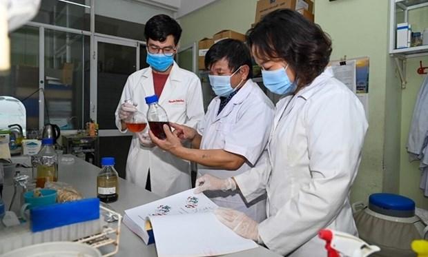 越南治疗新冠肺炎草药临床前研究结果出炉 hinh anh 1