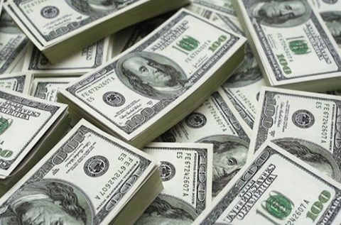8月10日上午越盾对美元汇率中间价下调14越盾 hinh anh 1