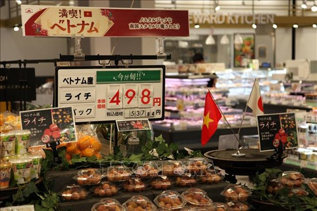 日本新潟县与越南各地方促进经济合作 hinh anh 2