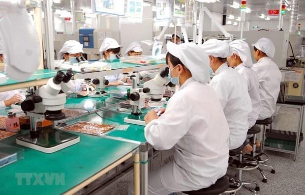 2021年前7个月越南手机及零配件出口额同比增长11.9% hinh anh 1