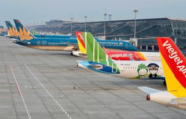 新冠肺炎疫情:最大限度减少飞往内排机场的航班数量 hinh anh 1