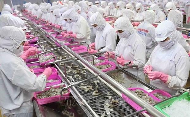 中国广州企业对越南水产品的进口需求大增 hinh anh 1