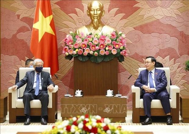 越南国会主席王廷惠会见联合国驻越协调员 hinh anh 1