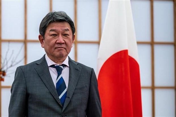 日本承诺全力支持东盟缅甸问题特使相关活动 hinh anh 1