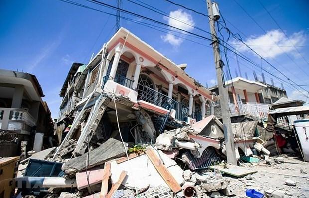 越南领导人致电慰问海地遭受地震灾害 hinh anh 1