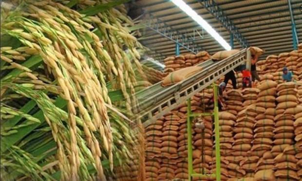 泰国大米价格创两年来新低 hinh anh 1
