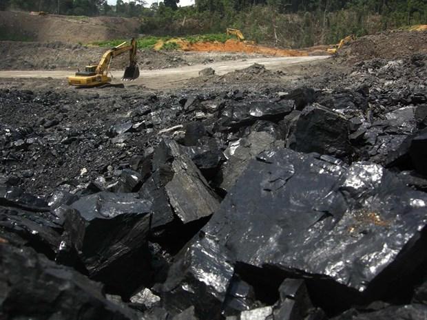 越南工贸部通报34家印尼企业被禁止出口煤炭的有关情况 hinh anh 1