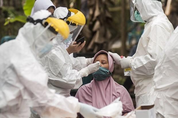 印尼政府承诺保障新冠患肺炎治疗药物供应源和价格稳定 hinh anh 1