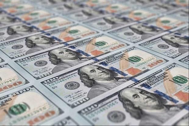 8月16日上午越盾对美元汇率中间价下调8越盾 hinh anh 1