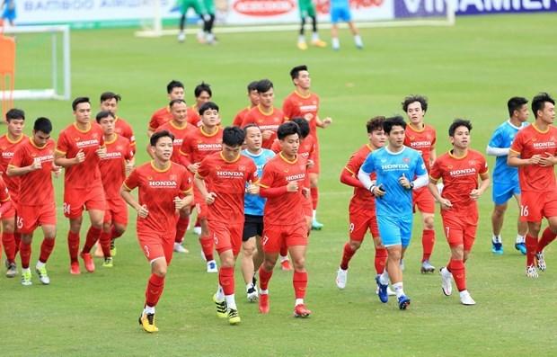 VFF决定取消球迷现场观看越南队vs澳大利亚队的计划 hinh anh 1