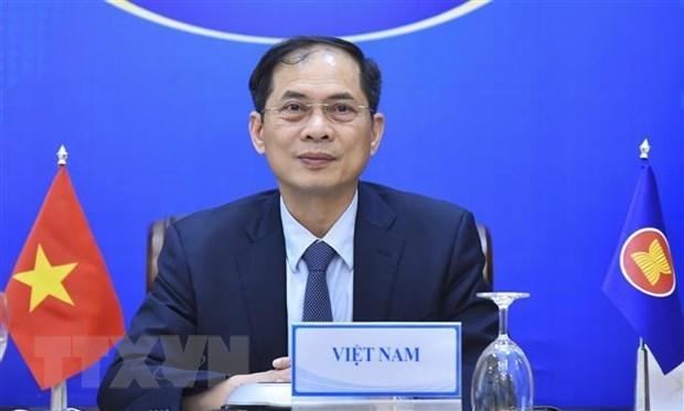 越南外长裴青山出席缅甸人道主义援助视频会议 hinh anh 1