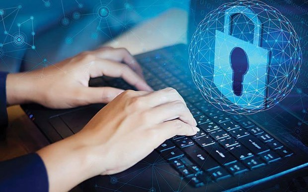 越南注重促进数字平台使用安全 hinh anh 1