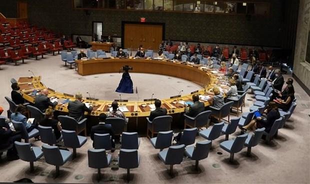 越南与联合国安理会:维和行动中的技术应用需做到保密高效 hinh anh 1
