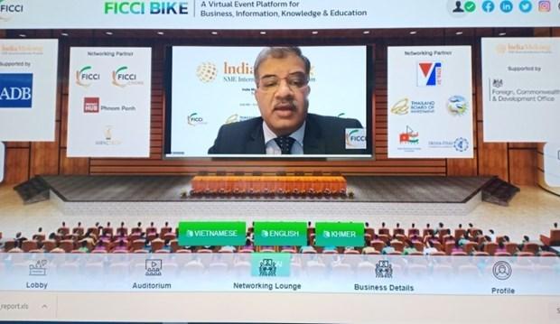 着力促进印度与大公河次区域国家之间的贸易往来 hinh anh 2
