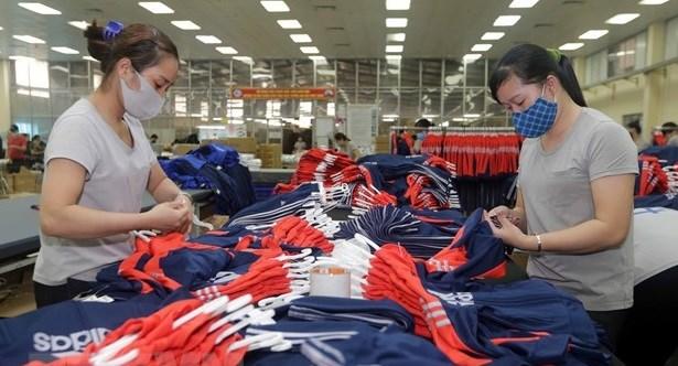 越南按照《越欧自贸协定》规定成立国内咨询组 hinh anh 1