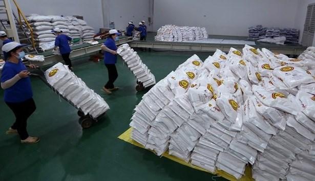 河内市为胡志明市和平阳省捐赠6000吨大米 hinh anh 1