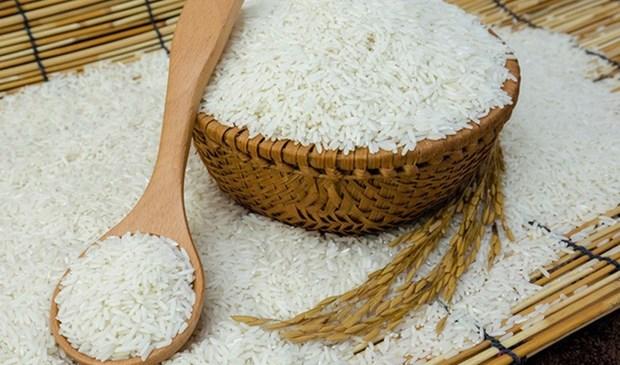 越南大米占菲律宾大米进口总量的87% hinh anh 1