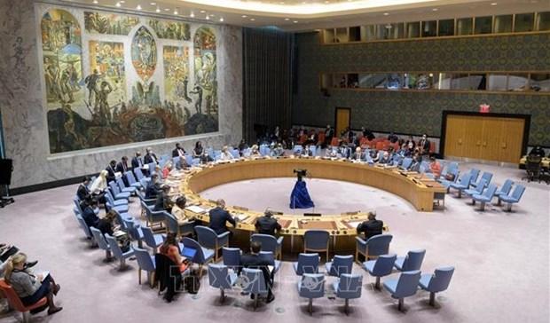 越南与联合国安理会:越南呼吁加强国际合作 应对恐怖主义危机 hinh anh 1