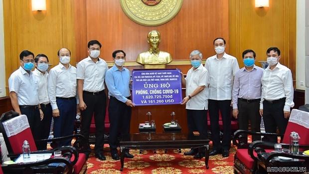 越南外交部长:海外越南人侨务工作是越南党和国家外交政策支柱 hinh anh 2