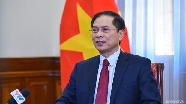 越南外交部长:海外越南人侨务工作是越南党和国家外交政策支柱 hinh anh 1