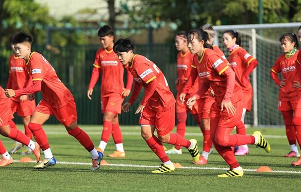FIFA最新排名:越南女足仍保持东南亚首位 hinh anh 1
