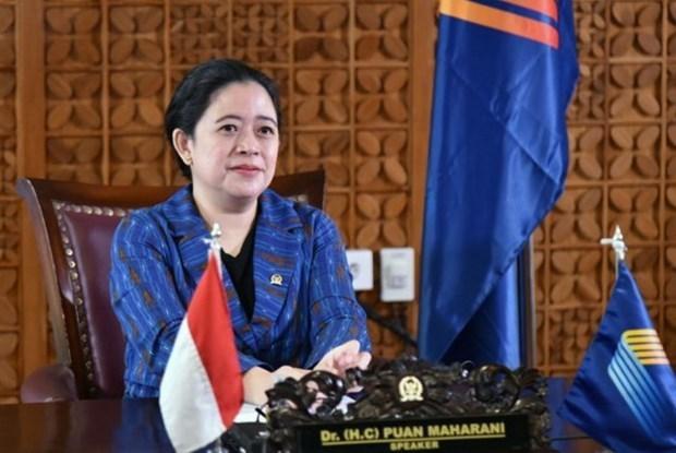 AIPA-42:印尼众议院议长呼吁东盟加强合作控制疫情 hinh anh 1