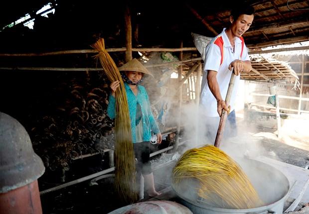实现生计多样化 助力高棉族人摆脱贫困 hinh anh 1