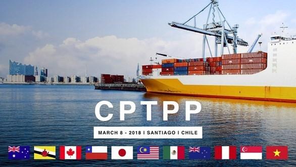 马来西亚:多国申请加入CPTPP充分体现该协定的重要性 hinh anh 1